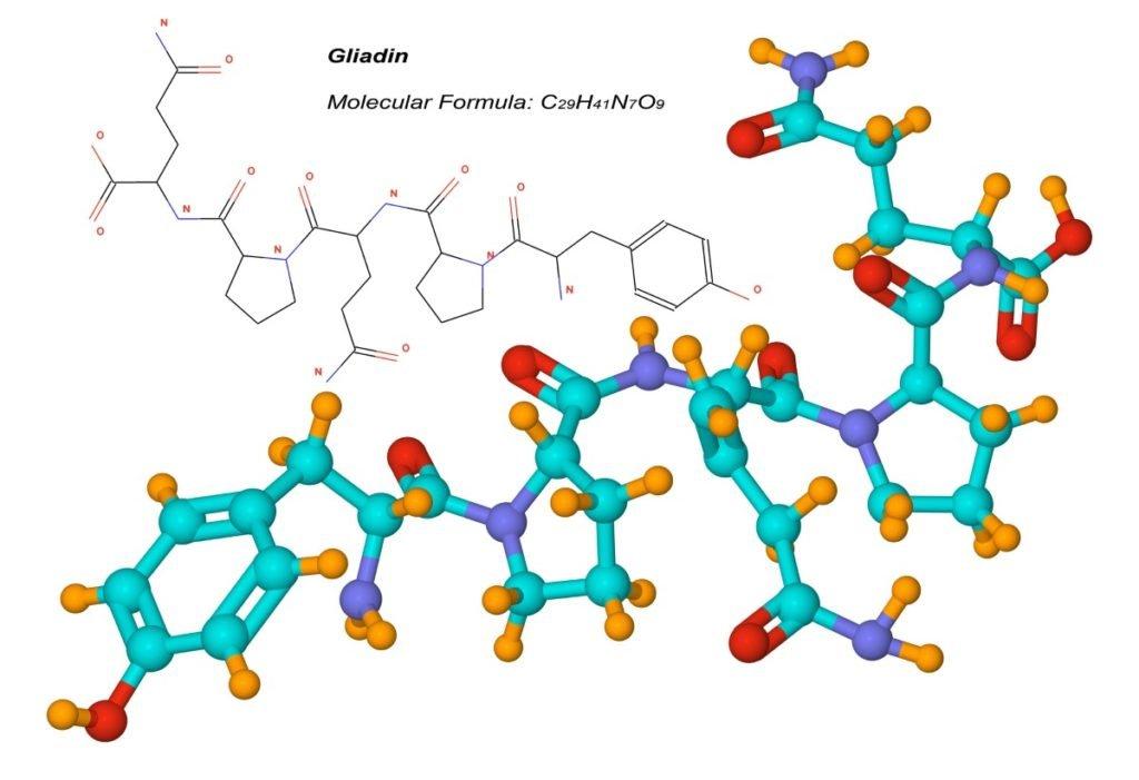 Gliadin molekulare Struktur der Glutenkomponente